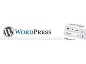 Utiliser l'éditeur texte (WYSIWYG) Wordpress dans plugins