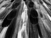 TARMAC Yann Arthus-Bertrand