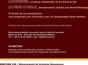 Projection vidéos d'Anna Ventura Mairie Caen novembre 2009