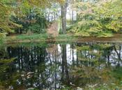 Parc Cesson-Sévigné Bretagne