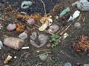 Banque mondiale prête milliard dollars pour nettoyer Gange