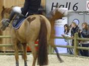 Académie Voltige Equestre Salon Cheval 2009