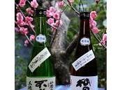 L'alcool japonais Sake