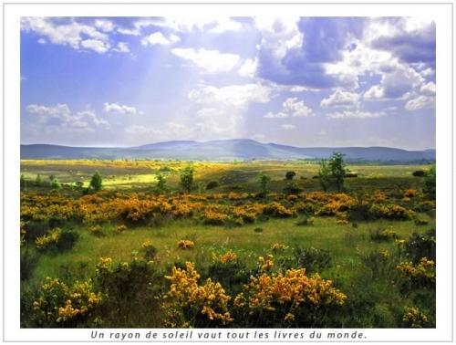 http://media.paperblog.fr/i/268/2682197/si-chemin-vers-compostelle-leo-gantelet-L-3.jpeg