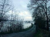 nouveau Meuse
