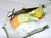 Argh insecte dans sushi