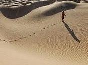 Quelques dans désert