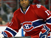Georges Laraque, Canadiens Montréal Haiti