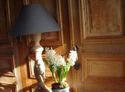 Jacinthes, lampe, poule font déco maison