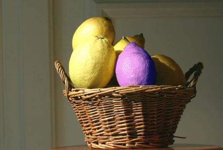 レモン モーブ purple lemon citron mauve