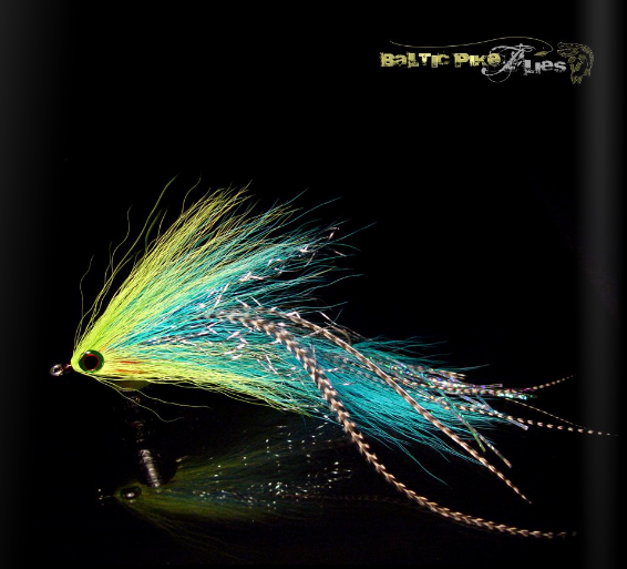 BALTIC FLIES #3