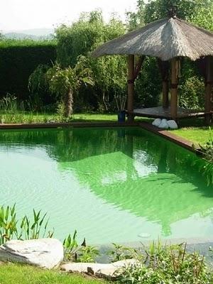 Les piscines écologiques