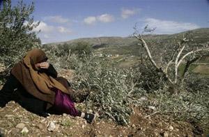 Rapport n° 59 sur les violations israéliennes des droits humains