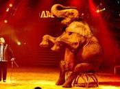 Water Elephants, nouveau film pour Robert Pattinson