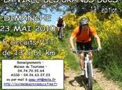 "Monts Lyonnais:Rando virée grands ducs"" 23/05/10"