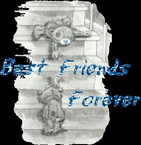 Best friends for ever !