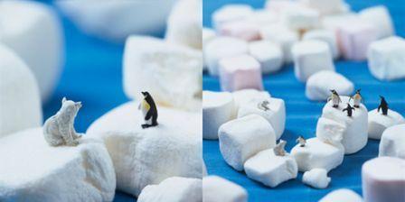 Akiko Ida et Pierre Javelle: Minimiam - Marshmallow fellows