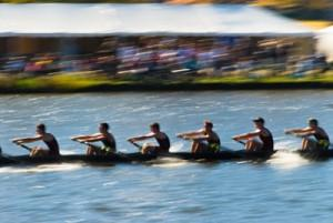 Course aviron Boat Race