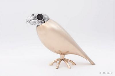 Companion Parrot