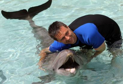 soderling-et-un-dauphin.png