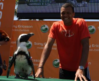 tsonga-et-un-pingouin.png