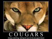 Etes vous Cougar