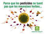 herbicides, cause dans maladie Parkinson