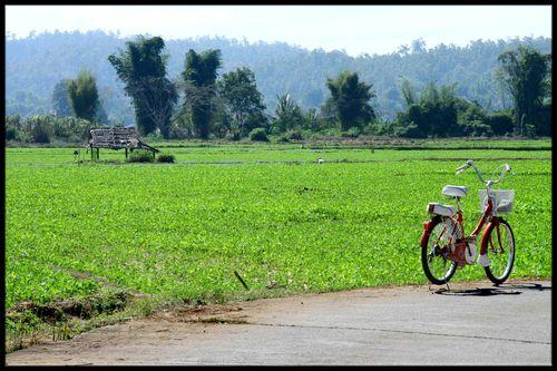 BLOG, ma bicyclette Mae Sariang