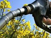 Étude Ademe agro carburants bilan demi-teinte