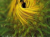 L'âme plantes Patrick Mouliane
