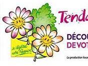 Mettez-vous vert week-end, mais Tendance Fleurie