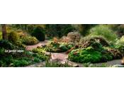 Jardin Plantes jardin chacun