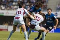 Montpellier Rugby... merci les p'tits gars !!!