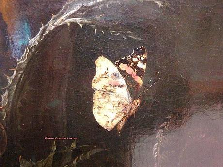 otto-marseus-van-shrieck-papillon.1272816283.jpg