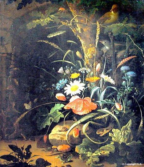 mignon-abraham-fleurs-insectes-reptiles.1272816502.JPG