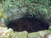 Qu'un puits recèle mystères! (Emily Dickinson)