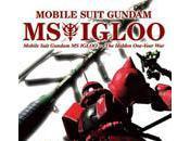 Gundam: IGLOO Hidden One-Year