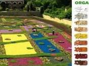 couleur jardin…