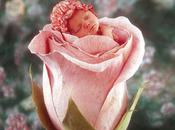 fleur offerte fille (James Joyce)