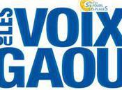 voix gaou festival 2010