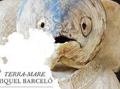 Miquel Barcelo Avignon –Terra Mare jusqu'au novembre 2010