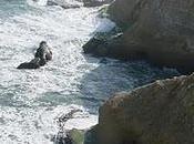 Paracas iles Balestas