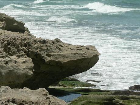 Blowing Rock Preserve