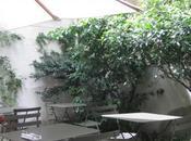 brunch priori thé' chez Bonpoint...sur jolie terrasse