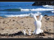 lapins crétins plage