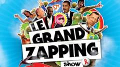 le grand zapping.jpg