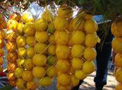 Oranges fête Tahiti