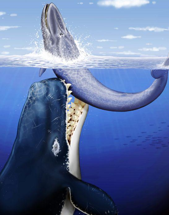 HOLY MOSES : The jaws of the Leviathan