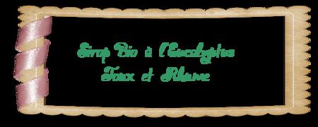 Etiquette_sirop_eucalyptus