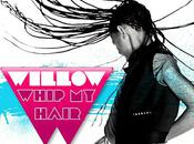 WILLOW SMITH Whip Hair Clip Officiel]